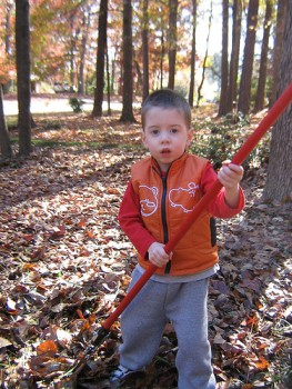 raking2FlickrFrotzed.medium